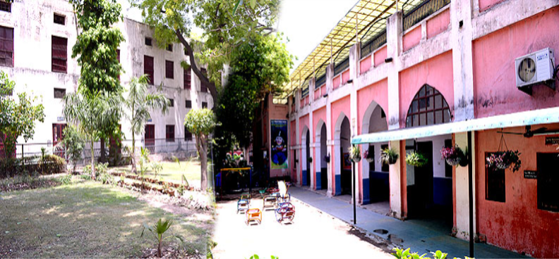 D.A.V. PUBLIC PRIMARY SCHOOL